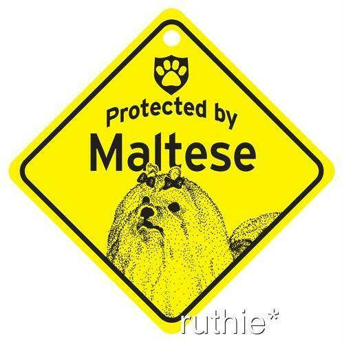 Protected by Maltese Dog Window Sign Made in USA