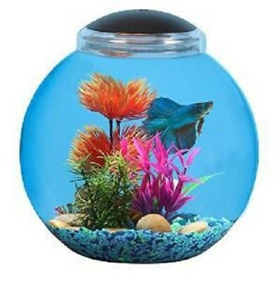 Aquarium Pharmaceuticals API Kit Betta Globe Led 3g(New Open Box)(Free Shipping)