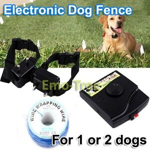 Dog Watch Invisible Fence Collars Bing Images