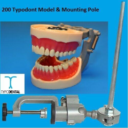 Typodont Dental Model 200 works with Kilgore brand teeth & Mounting Pole
