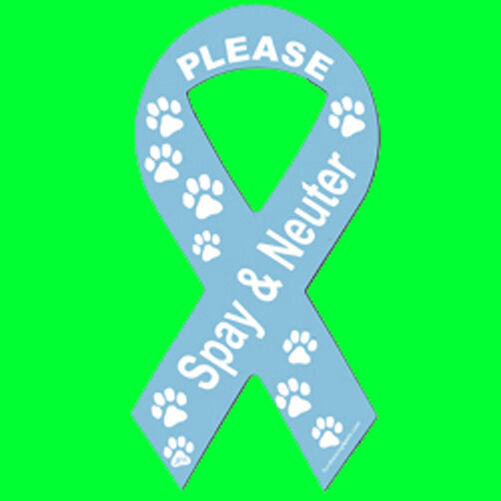 Blue SPAY & NEUTER Ribbon Magnet,4 Dog Cat Pet Rescue Charity