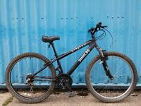 X-Rated MTB