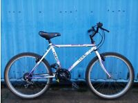 Tema Mountain Junior Bike 1