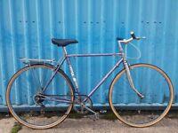 Carlton Road Town Bike