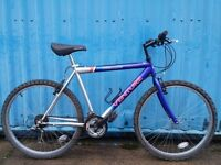 Adults Mountain bike (18 gears)