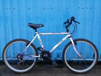 Tema Mountain Bike 1