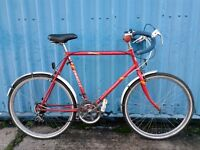 Emmelle Leopard Road Town Bike