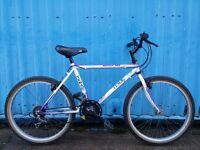Tema Mountain Bike