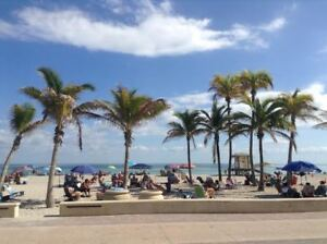 BEACH FRONT CONDO - HOLLYWOOD Beach, Florida