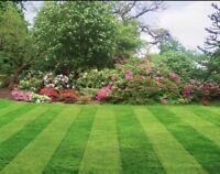 Professional & Affordable Yard Aerating, Mowing, + | NW Calgary