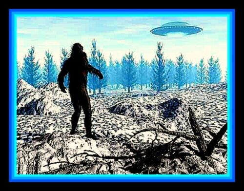 "4.5"" RARE! Bigfoot sees a UFO vinyl sticker. Sasquatch & alien decal for car."