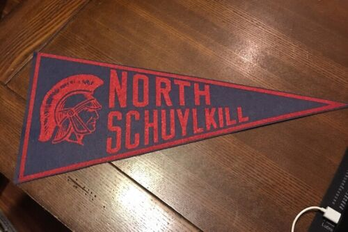 Vintage 1950-70 Era Felt Wool Pennant North Schuykill High 21  - $9.99