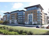 1 beautiful apartment in Royal Arsenal- Se18