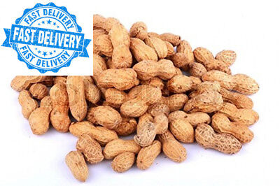 5KG PEANUTS IN SHELL MONKEY NUTS WILD BIRD FOOD SOLD BY MALTBY'S CORN STORES...