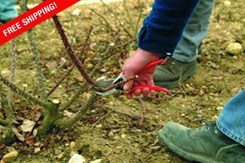 Classic Manual Hand Pruner, F 2, Red, Rubber Cushion And Shock Absorber  - $73.79
