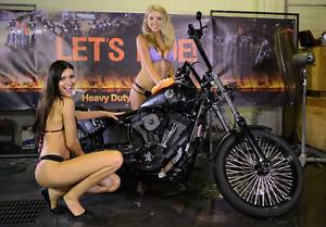 Harley Davidson Night Train fxstb Browns Plains Logan Area Preview