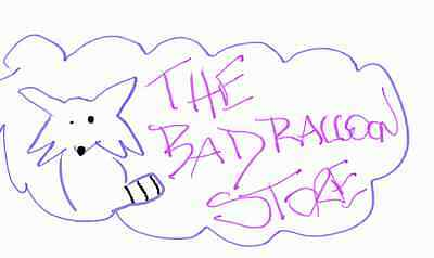 the_bad_raccoon_store