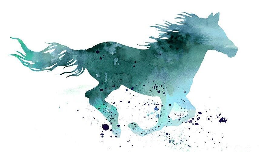 Teal Horse Designs