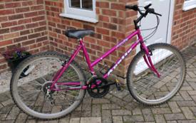 Apollo Aquila Ladies Bike