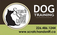 Free info session! Dog Training in Downtown Guelph