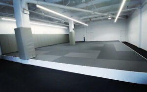 New Gym for Rent downtown.Aikido judo yoga fit boxing krav maga