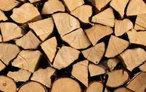 13 Cord Dry Maple Firewood