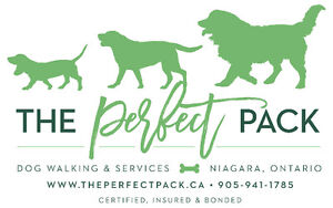 The Perfect Pack: Certified Dog Walker