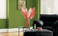 Cheap Perfect Painter, awesome deals ,fantastic work,