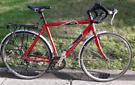 Raleigh Pioneer Venture (60cm) serviced bargain touring bike