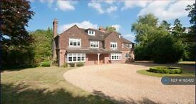 5 bedroom house in Boughton Hall Avenue, Woking, GU23 (5 bed)