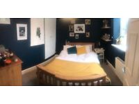 Awesome double room in Forest Hill pad - £695 incl. ALL BILLS