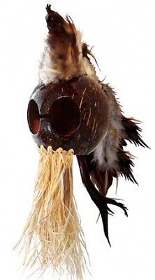 "Brown Ikaika Hawaiian Warrior Coconut Helmet Car Vehicle Decor 3"" Coconut AB06"