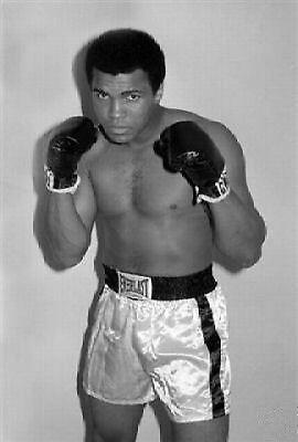 Muhammad Ali Posed Photo 10x8 Photo