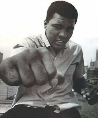 Muhammad Ali FIST Cassius Clay 10x8 Photo