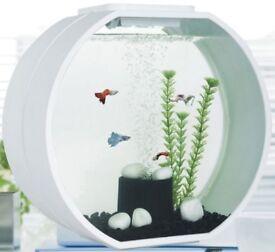 Fish tank Deco Mini and Marine Test