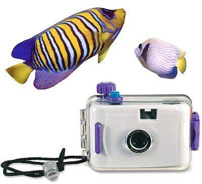 Unterwasserkamera für Unterwasserfotos beim Schnorcheln, Strandurlaub Bootssport