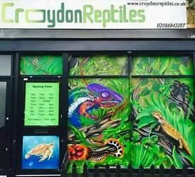 Graffiti Artist ,spray can , airbrush digital art and more ..