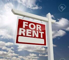 One Room Available for Rent - Lovely Accomodation