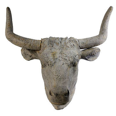 Sculptures Angus Horned Wall Accent Cow