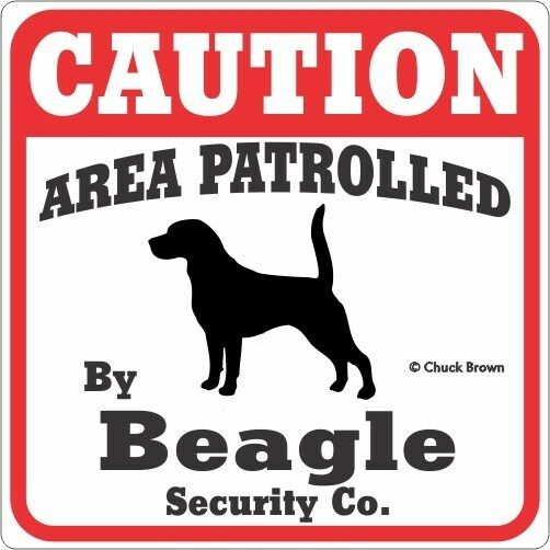 Beagle Caution Dog Sign