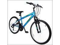 Nitro spike boys bike