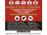 Guaranteed Pest Control Service|Extermination|Fumigation|Spray & Get rid of BedBugs Mice Cockroaches