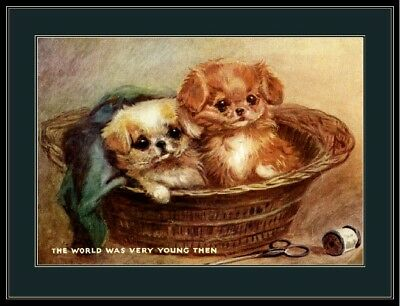 Vintage English Print Pekingese Puppy Dog Dogs Puppies Basket Art Picture Poster