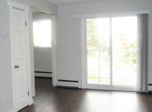 BRIGHT NEWLY RENO'D Bachelor Suite in Great Location!
