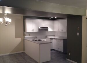 Renovated apartment 1 July 2019 laval