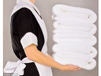 Domestic housekeeping and ironing required in Cobham, Surrey, immediate start, £12+ph