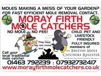 Mole catcher inverness