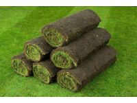 LUXURY Garden TURF - Amazing quality - Top -premier quality (not the B&Q cheap stuff)