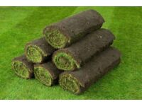 Top quality cultivated turf. Grass top soil