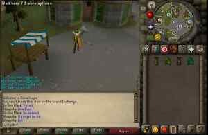 "Maxed Runescape 4 def pure. Lvl 77 combat. Look up ""lucky 3""."